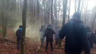 Imatge de:La policia alemanya intenta desallotjar centenars d'activistes d'un bosc per on ha de passar una autopista