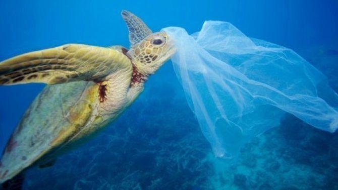 L'any 2050 hi haurà més plàstics que peixos als oceans