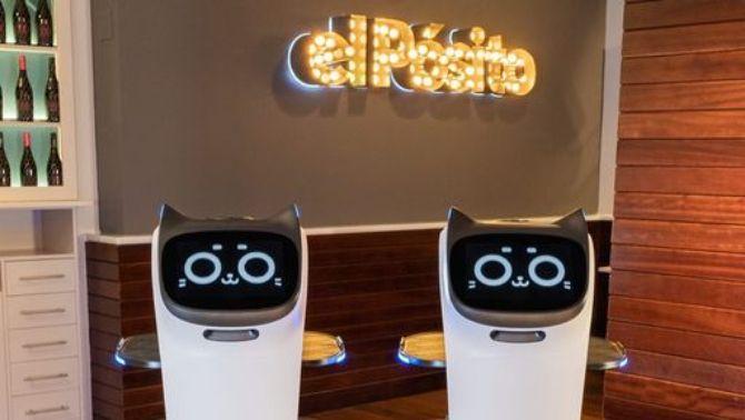 Els dos robots que 'treballen' al Pòsit de Cambrils