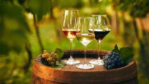 Tres bons vins per menys de 6 euros, segons Josep Roca