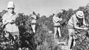 Generació Kibbutz