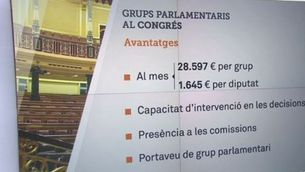 Per què és important tenir grup parlamentari propi?