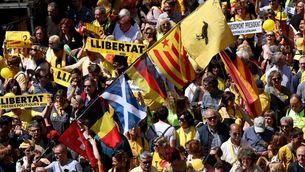 """Banderes de diverses països, avui, a la manifestació """"Us volem a casa"""" (Reuters)"""