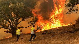 Voluntaris combaten el foc a Algèria