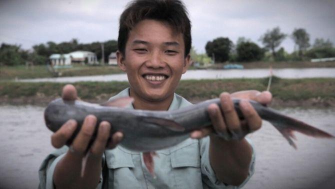 El panga, un peix barat sota sospita