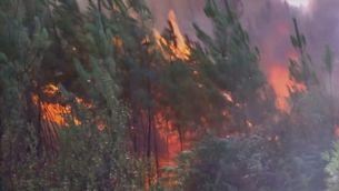 Els incendis de sisena generació o els megaincendis, un fenomen global