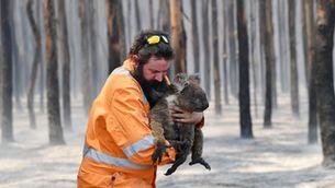 El fum dels incendis a Austràlia arriba a Xile, i ja hi ha 24 detinguts