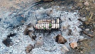 Denunciades 20 persones per fer una barbacoa a Amposta i encendre foc sense permís