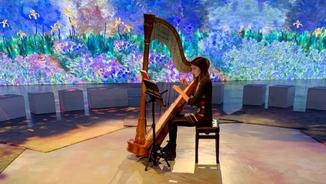 Imatge de:Afinacions i instruments musicals, amb l'arpista Esther Pinyol