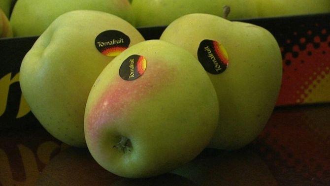 Tornabous té la millor poma golden