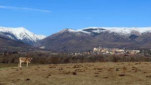 Els turistes de ciutat són prou curosos quan visiten el camp i la muntanya?