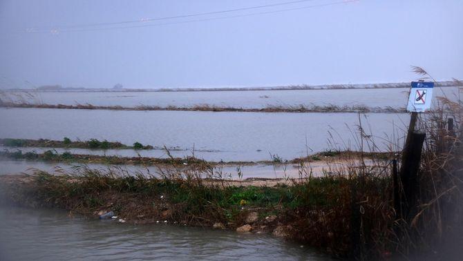 """El delta de l'Ebre, en """"emergència total"""" pel Gloria, reclama actuacions urgents"""