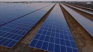 La planta solar més gran del món