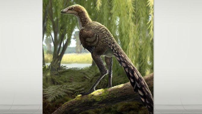 Tamarro, l'espècie de dinosaure carnívor amb nom de criatura fantàstica del Pallars