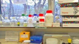 Errors genètics i del sistema immunitari expliquen el 15% dels casos de Covid més greus