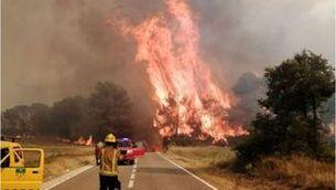Foc a Santa Coloma de Queralt: crema 110 hectàrees i avança per zona forestal
