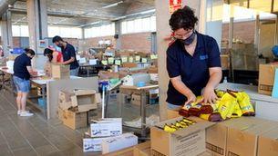 Aliments per a 200 famílies vulnerables del Gironès amb doble vessant social des de la Fundació Els Joncs de Sarrià