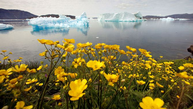Groenlàndia no autoritzarà més prospeccions per buscar petroli o gas