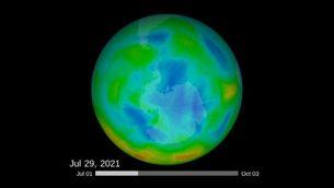 Evolució de la capa d'ozó