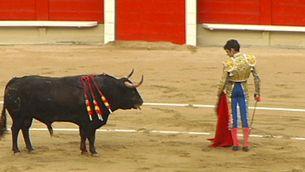 Imatge d'un toro i un torero