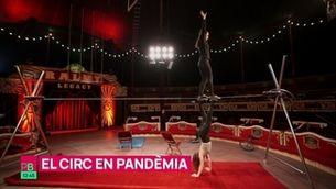 Planta baixa - Com s'ho fa, el circ, per sobreviure durant la pandèmia?