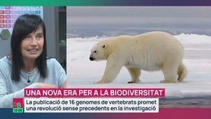 Una nova era per a la biodiversitat
