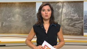 Telenotícies comarques - 14/08/2019