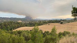 Controlat l'incendi de l'Anoia i la Conca de Barberà, que ha afectat 1.700 hectàrees