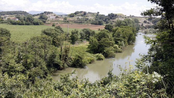 Un projecte europeu destinarà 2,5 MEUR per protegir les vernedes de les conques del Besòs, l'Alt Ter i l'Alt Segre