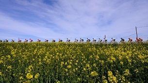iCat busca la cançó de la Volta Ciclista a Catalunya 2022