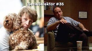 """SerieSelektor #35"" 09.06.21 ""Sèries per no anar al psicòleg"""