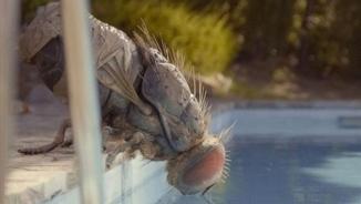 """Una mosca gegant protagonitza la surrealista i divertidíssima pel·lícula """"Mandíbulas"""""""