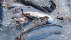 Els nivells d'àcids omega-3 alts a la sang augmenten l'esperança de vida uns cinc anys