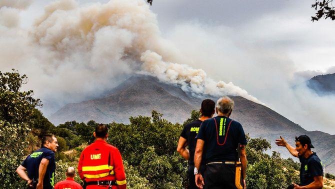 Bombers i personal de l'UME treballant en l'extinció de l'incendi de Màlaga