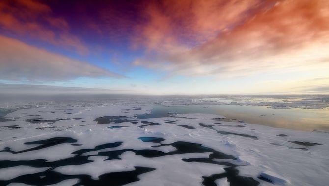 La màxima extensió anual de gel a l'Àrtic és la setena més petita en 43 anys