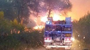 L'incendi d'Olivella (ADF Garraf)