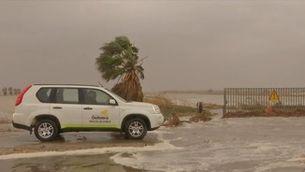 L'aigua del mar entra al Delta i posa en perill tres mil hectàrees d'arrossars