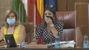 Enrenou al Parlament andalús quan una rata es cola enmig d'un ple