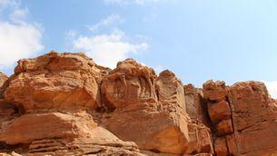 Uns camells esculpits a la roca a l'Aràbia Saudita, els relleus a gran escala més antics