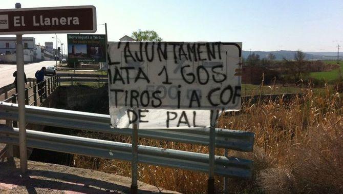 Una de les pancartes denunciant la mort del gos que hi ha al poble. (Foto: ACN)