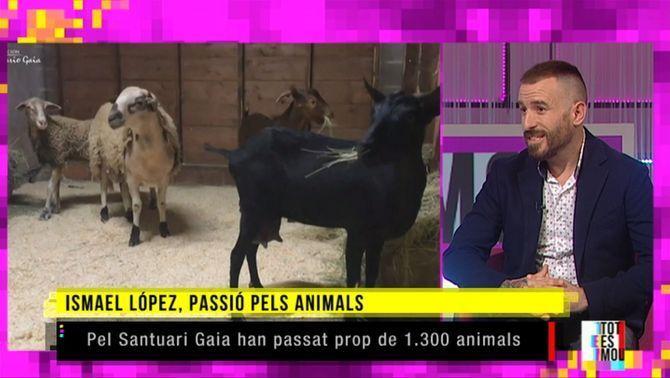 """Ismael López: """"Els sentiments dels animals són els mateixos que els de les persones"""""""