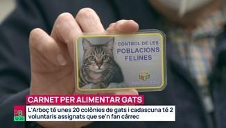 Imatge de:Un carnet per alimentar gats