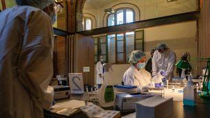 Professionals de l'Hospital de Sant Pau analitzen tests d'antígens de Covid