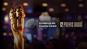 24 produccions amb participació de TV3 entre les candidates als XII Premis Gaudí