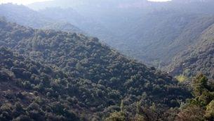 Territori es mostra disposat a iniciar la tramitació del Parc Natural de les Muntanyes de Prades