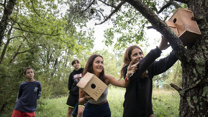 Els avantatges d'aprendre a la natura i l'aire lliure