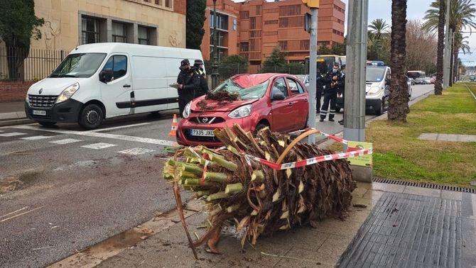 Incidències pel fort vent i la ràpida línia de tempestes que ha travessat Catalunya