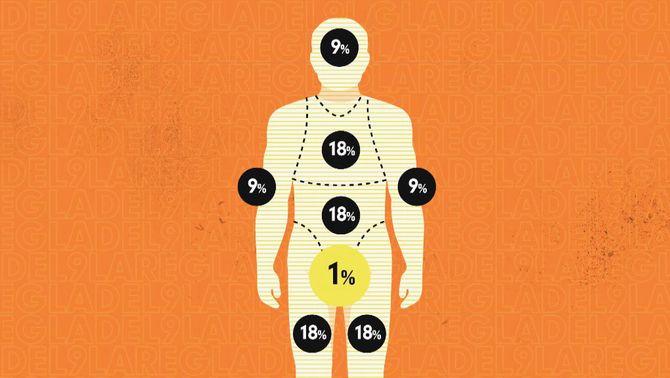 La importància dels diferents òrgans a l'hora de tenir una relació sexual