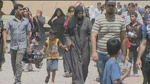 Mossul cau en mans de partidaris d'Al-Qaeda