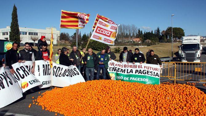 Els pagesos de l'Ebre reclamen solucions a la crisi dels cítrics